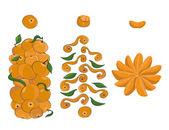 Mandarins set — Stock Vector