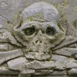 Carved skull — Stockfoto