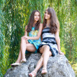 Sisters and willows — Stock Photo #12166023