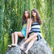 Sisters and willows — Stock Photo