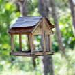 Stock Photo: Bird feeder