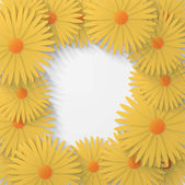 Flower chamomile background — Vector de stock