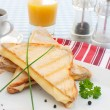Toasted sandwich — Stock Photo