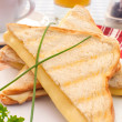 Toasted sandwich — Stock Photo #16640105