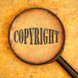 Copyright — Stock Photo #26046843