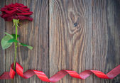 Red rose border background — Stock Photo