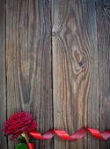 Borde rojo rosa — Foto de Stock