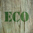 Stock Photo: Eco word