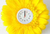 Spring clock — Stock Photo