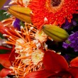 Bunch of flowers — Stockfoto