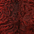 Stock Photo: Red karakul texture background