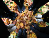 Standing in a circle in fallen leaves — Stock Photo