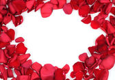 Red rose petals frame — Stock Photo