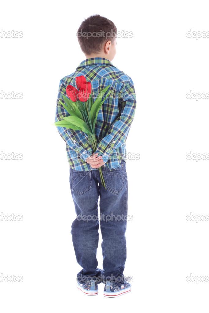 小男孩躲后面自己孤立在白色背景上的红色郁金香花