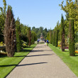 Regents Park in London — Stock Photo