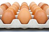 Carton of Eggs — Stock Photo