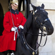 Horse Guard in London - Stock Photo