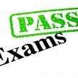 Passed Your Exams — Stock Photo