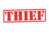 THIEF — Stock Photo