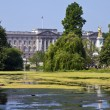 Buckingham Palace from St. James's Park in London — Stock Photo