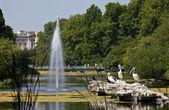 Pelicans in St. James's Park — Stock Photo