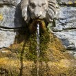 Lion's Head Drinking Fountain at Chalice Well — Stock Photo #29808547