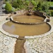 VesicPool in Chalice Well Gardens — Stock Photo #29808579