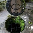 Chalice Well in Glastonbury — Stock Photo #29808581