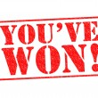 YOU'VE WON! — Stock Photo #33228149