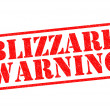 Stock Photo: BLIZZARD WARNING