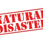 Постер, плакат: NATURAL DISASTER