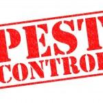 PEST CONTROL — Stock Photo #41634841
