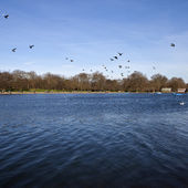 The Serpentine in Hyde Park — Stock Photo