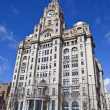 Royal Liver Building in Liverpool — Stock Photo #45116011