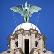 Liver Bird Perched on the Royal Liver Building — Stock Photo #45116063