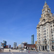 The Royal Liver Building on the Pier Head in Liverpool — Stock Photo #45116203
