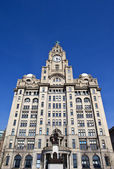 The Royal Liver Building on the Pier Head in Liverpool — Foto Stock