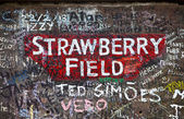Strawberry Field in Liverpool — Stock Photo