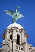 Liver Bird Perched on the Royal Liver Building — Stock Photo