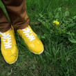 Stock Photo: Yellow sneakers