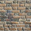 Old brick wall — Stock Photo #14097376