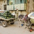 Street scene with watermelon seller in cairo old town egypt - 图库照片