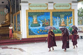 Monks in rain at shwedagon paya temple yangon myanmar — Stock Photo