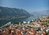 View of kotor town in montenegro — Stock Photo