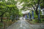 Jardin de temple à kyoto au japon — Photo