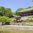 Palace garden building seoul south korea — Stock Photo