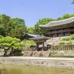 Palace garden building seoul south korea — Stock Photo