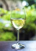 Bir bardak beyaz şarap — Stok fotoğraf