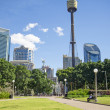 Central sydney park in australia — Stock Photo