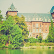 Stock Photo: Castello del Valentino retro look